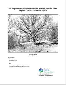 ace-report-cover